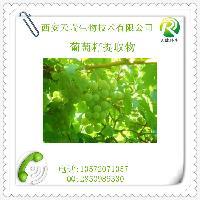 葡萄籽原花青素 葡萄籽提取物