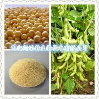 大豆异黄酮 40% 大豆提取物   厂家原料 斯诺特厂家