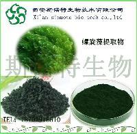 螺旋藻粉99%   斯诺特厂家直销   螺旋藻提取物