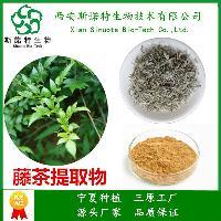 二氢杨梅素98% 西安斯诺特 现货库存  含量可定制 藤茶萃取