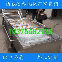 安泰专业生产蔬菜气泡清洗机 连续式洗菜机
