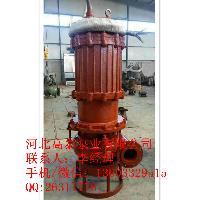 潜水泵厂家 65ZJQ-58-30-K潜水式渣浆泵高铬叶轮