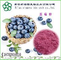 蓝莓果粉   蓝莓粉  斯诺特厂家直销   蓝莓提取物