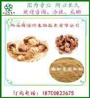 姬松茸多糖50%  巴西蘑菇提取物 姬松茸提取物   斯诺特生物