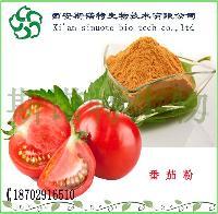 番茄粉   西红柿粉  洋柿子/番柿/西红柿/番茄提取物