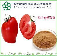 红番茄提取物20:1   斯诺特厂家直销    番茄粉