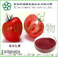 番茄红素5%   番茄提取物斯诺特厂家现货  水溶性番茄素