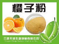 天然果蔬粉  橙子粉  厂家直销