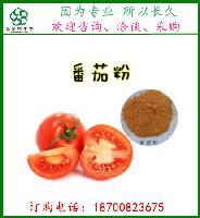 番茄提取物  西红柿提取物  洋柿子提取物    斯诺特新货出炉