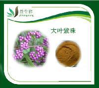 紫珠提取物 比例提取 10:1  甘肃益生祥