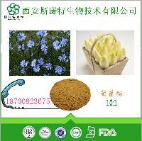 菊苣提取物 10:1    菊苣粉  固体饮料用   水溶性好