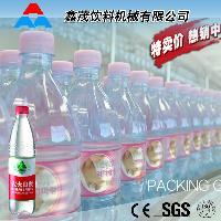 小型瓶装纯净水灌装生产线 山泉水矿泉水灌装机