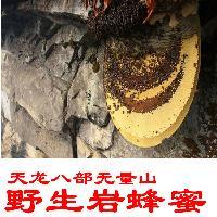 云南城深山 岩蜂蜜 纯正天然 野生峰蜜 悬崖野蜜 蜂巢蜜包邮