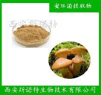 蜜環菌提取物 蜜環菌多糖 榛蘑提取物 斯諾特廠家  蜜環菌多糖