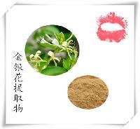 金银花提取物 8%绿原酸 金银花浸膏粉 斯诺特厂家
