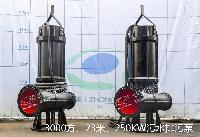 WQ大功率排污污水泵