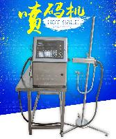 广州蓝垟全自动光纤激光打标机 流水线在线飞行高速激光喷码机