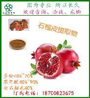 药典标准石榴皮提取物 安石榴甙 10%-40%  固体饮料用