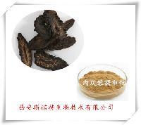 管花肉苁蓉提取物 总苷80% 毛蕊花糖苷 松果菊苷25% 斯诺特厂家