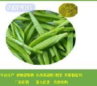 供应茶多酚提取物  工厂热销绿茶提取物 绿茶粉饮料