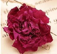 365朵玫瑰花冠王 玫瑰花冠茶 玫瑰花茶 低温无硫绿色纯天然