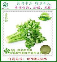 芹菜提取物  芹菜膳食纤维 代餐粉原料  斯诺特厂家自有种植基地