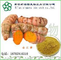 姜黄提取物 正品优质 姜黄素 现货 斯诺特直销厂家