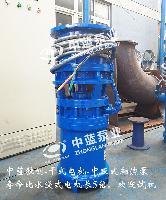 中吸式轴流泵原理配套设备