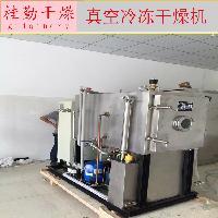 实验室冻干机水果片冷冻干燥机 5平方真空冷冻干燥机