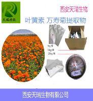 叶黄素 20% 万寿菊提取物 含量产品 供应中