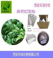 藤茶提取 规格:二氢杨梅素 98% 源头厂家直销
