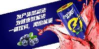 眼电宝蓝莓维生素饮料果汁