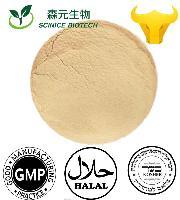 绿咖啡豆提取物 绿原酸总酸50% 优质货源 厂家热销 量大优惠