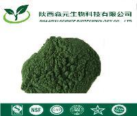 叶绿素铜钠盐 油溶性叶绿素 水溶性叶绿素20%