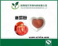 优质番茄粉 绿色食品级原料 番茄果汁粉 厂家品质保证
