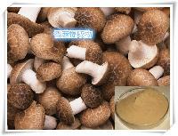 香菇提取物   厂家代加工固体饮料 压片糖果 oem