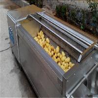供应HB-MS-1800红薯毛刷清洗机