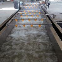供应小菠菜气泡清洗机厂家