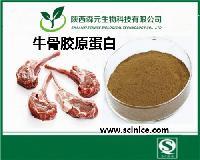 牛骨胶原蛋白 99%