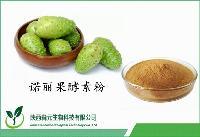 诺丽果酵素粉 营养代餐粉 诺丽果酵素99% 1公斤起订