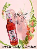 果味啤酒招商|草莓果味饮品代理批发