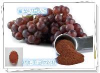 葡萄籽浓缩粉 原花青素95% 葡萄籽提取厂家