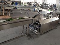 青岛迈德龙三轴伺服叶菜包装机