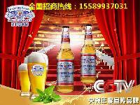 瓶装啤酒供货厂家招地区代理商经销商