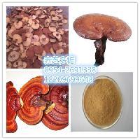 赤芝多糖 赤灵芝粉作用  赤芝提取物厂家   赤芝速溶粉价格