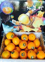 去火星 赣南脐橙 火星橙16斤/箱 橙子