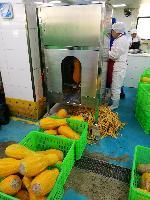 中央厨房专用南瓜削皮机,可削冬瓜、芋头等28种果蔬