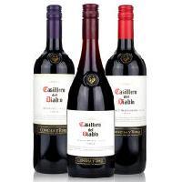 【智利酒王】智利红魔鬼梅洛代理价,智利红酒专卖09