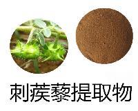 刺蒺藜皂甙 原薯蓣皂甙 刺蒺藜提取物厂家
