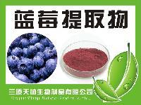 蓝莓提取物 25%原花青素 蓝莓粉 蓝莓提取物 优质花青素原料